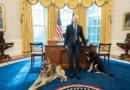 Maxi piano di aiuti contro il Covid voluto da Joe Biden