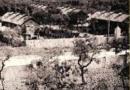 Bari 1924: Quando gli Armeni vennero accolti.